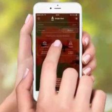 Альфа банк: мобильное приложение